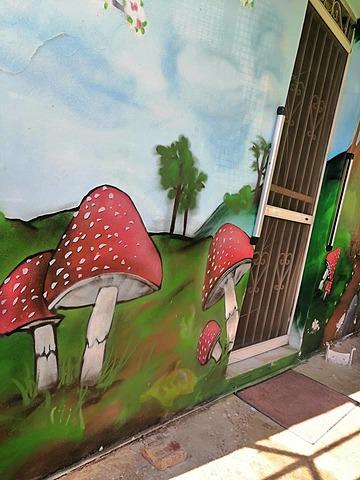 Φωτογραφίζουμε τη street art στη συνοικία μας