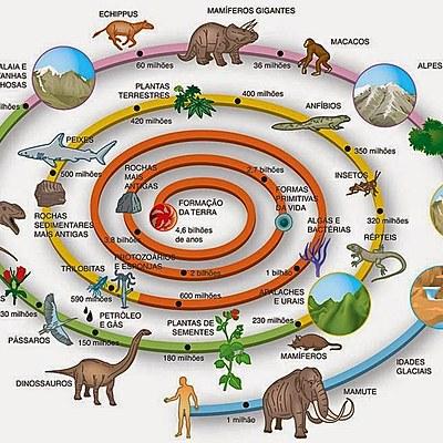 EVOLUCIÓN DE LA VIDA EN LA TIERRA (en millones de años) timeline