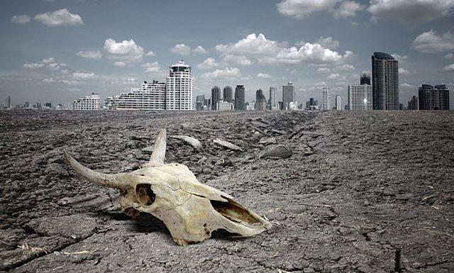 """La Sexta Extinción Masiva, una extinción en masa causada por una especie """"en particular"""""""