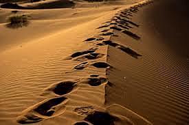 Frank Herbert könyve a gépen - Dune I-II. talán a legjobb stratégiai játék volt