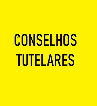 CMDCA - CONFLITO CMDCA E CTs