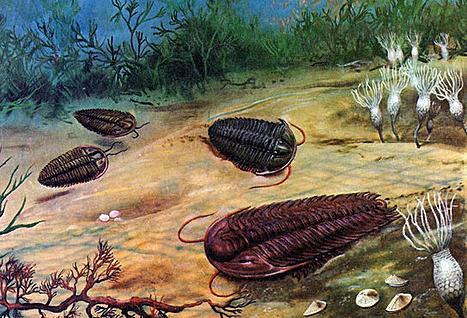 Neoproterozoic (1000 millions years ago)