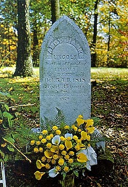 The Death of Lincoln's Mother