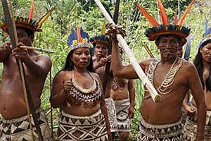 Disminución de la población Indigena