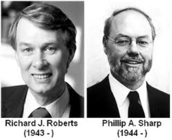 RICHARD ROBERTS and PHILLIP SHARP