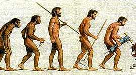 La Evolución de los Homínidos timeline