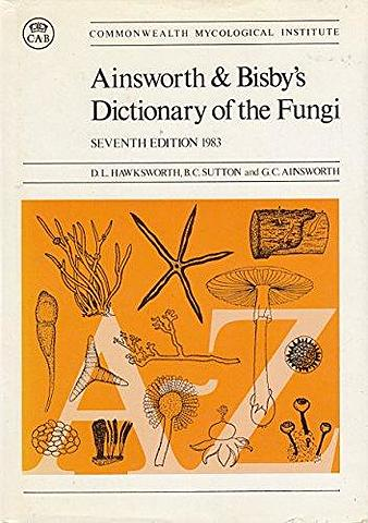 División Eumycota: Aquí iban los considerados como hongos verdaderos. Se distinguían 5 subdivisiones