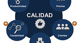 Calidad y Su Evolución. Carmen García 1236417 timeline