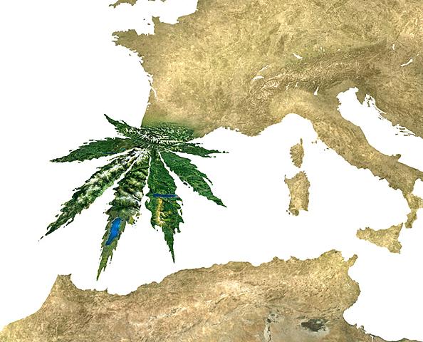 Ingreso a España