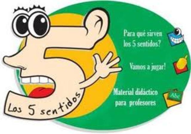 DISPOSITIVOS QUE INCLUYEN LOS 5 SENTIDOS