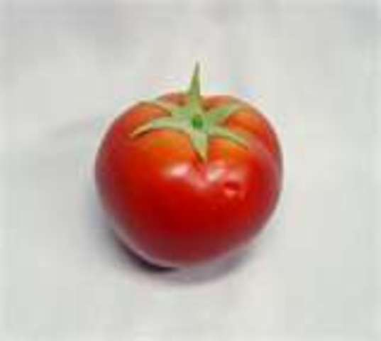 The first commercially GMO food was a tomato called Flavr Savr, was produced by Calgene.