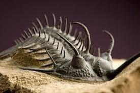 Era Mesoproterozoica