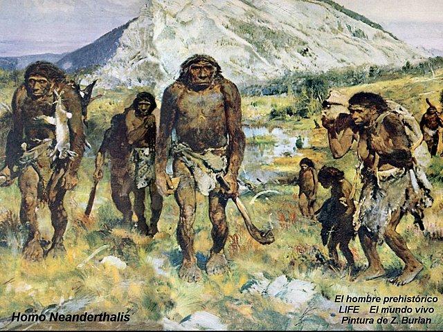 Periodo Pleistoceno
