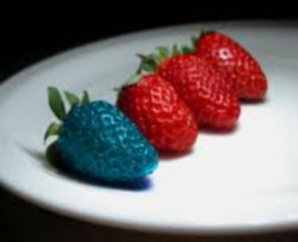 Future of Genetically Modified Foods