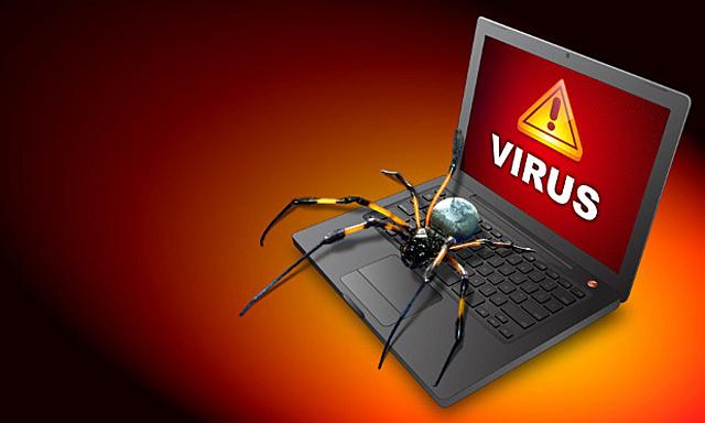 «Двуполый» вирус