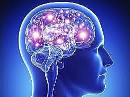 Neuropsicológia Clínica
