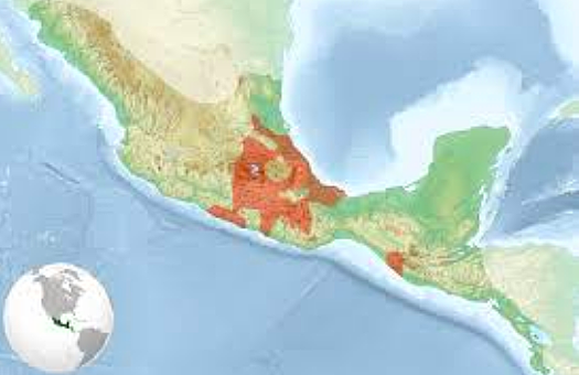 The Aztecs arrive in the Valley of Mexico