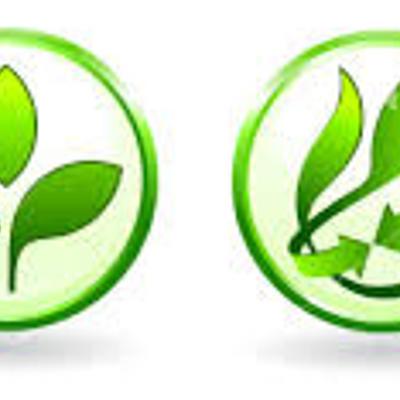 Historia de la gestión ambiental timeline