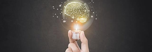 Produção e sistematização coletiva do conhecimento