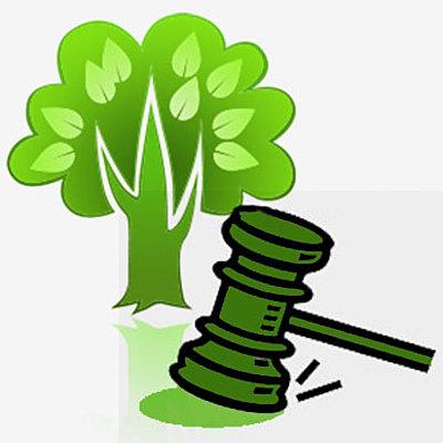 Legislação Ambiental Brasileira e a Política Nacional de Educação Ambiental – PNEA timeline