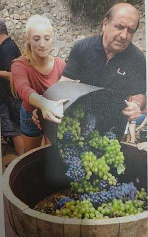El vi de la Laietania