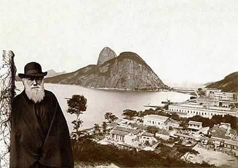 Llegada a Brasil