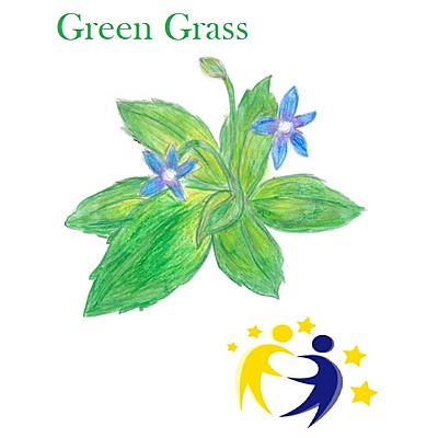 GREEN GRASS - TIMELINE timeline
