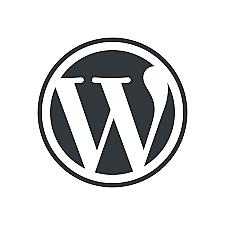 Information Age: Blogs: WordPress