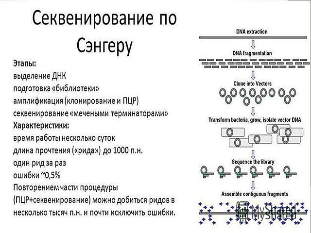 Открытие Сангером метода секвенирования
