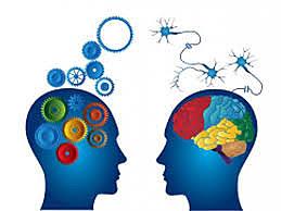 Principio epistemológico: causas eficientes, no finalistas.