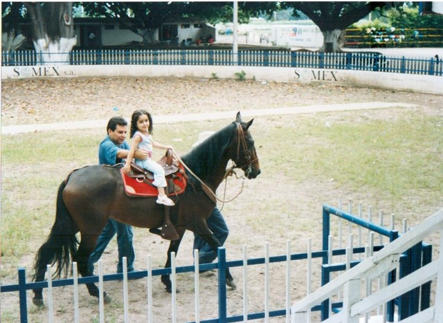 My first time rode a horse