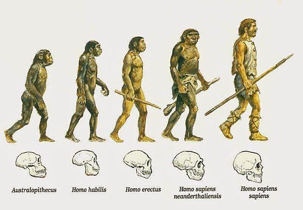 Desde la primera etapa de la evolución humana