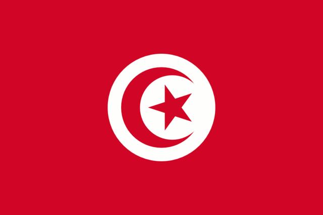TUNISIA: A Tunisian street vendor sets himself on fire