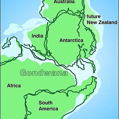 Origin of New Zealand timeline