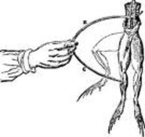 Luigi Galvani: Frog Legs