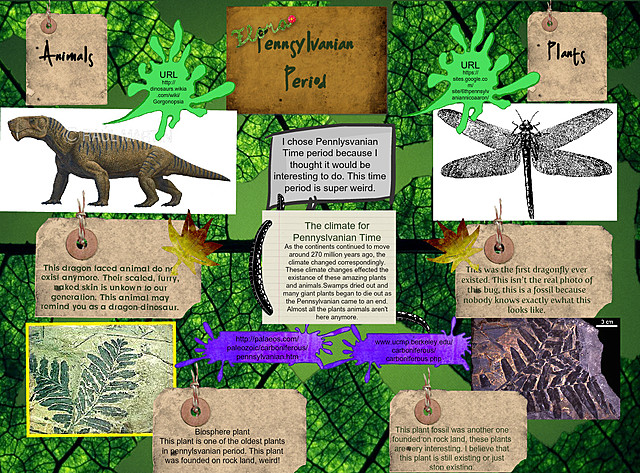 Coal forests, insects and reptiles