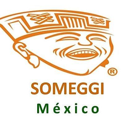 Sociedad Mexicana de Geronto-Geriatría A.C