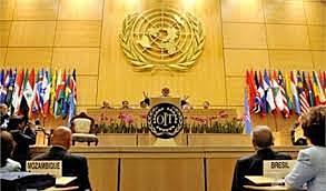 La ONU adopta la Convención Internacional
