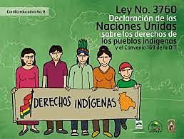 Declaración de las Naciones Unidas sobre los Derechos de los Pueblos Indígenas.