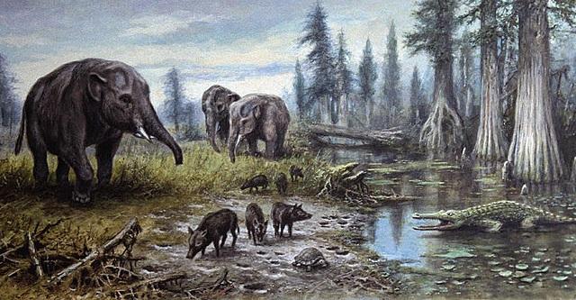 Tertiary - Mammals began to develop
