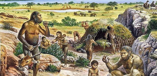 Quaternary - The appearance of hominids