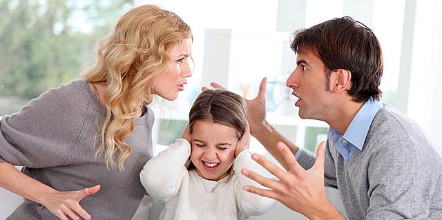 La inclusión de la materia familiar