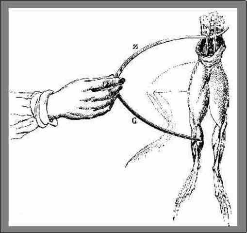 Luigi Galvani: Muscle Moving Energy