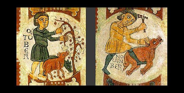 EVOLUCION E HISTORIA DEL CERDO