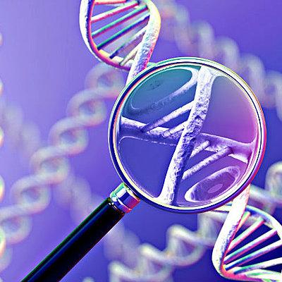 Historia de la Genética hasta nuestros días timeline