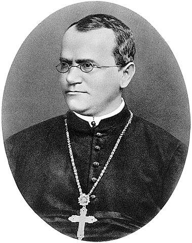 El monje austriaco Gregor Mendel describe las leyes básicas de la genética a partir del estudio de guisantes. Su obra no será tenida en cuenta hasta principios del siglo XX.