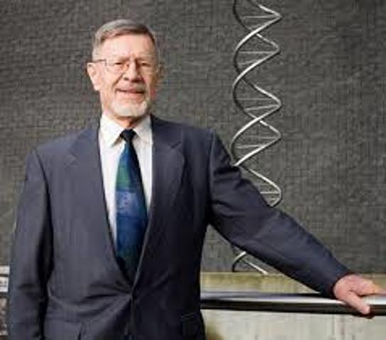 Walter Fiers y su equipo, en el Laboratorio de biología molecular de la Universidad de Gante (Bélgica), fueron los primeros en determinar la secuencia de un gen: el gen para la proteína del pelo del bacteriófago MS2.