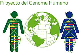 Primeras secuencias del genoma humano por parte del Proyecto Genoma Humano y Celera Genomics