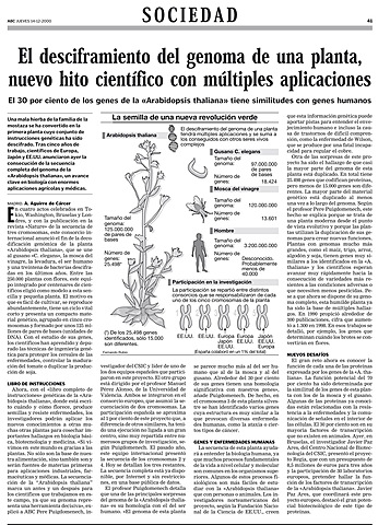 Mapa completo del genoma de una planta comestible