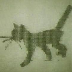 Создание компьютерной математической модели движения кошки.